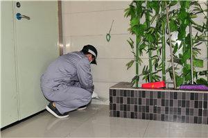 食品工厂虫害防制