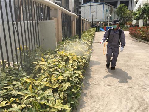 小区公共绿化带消杀