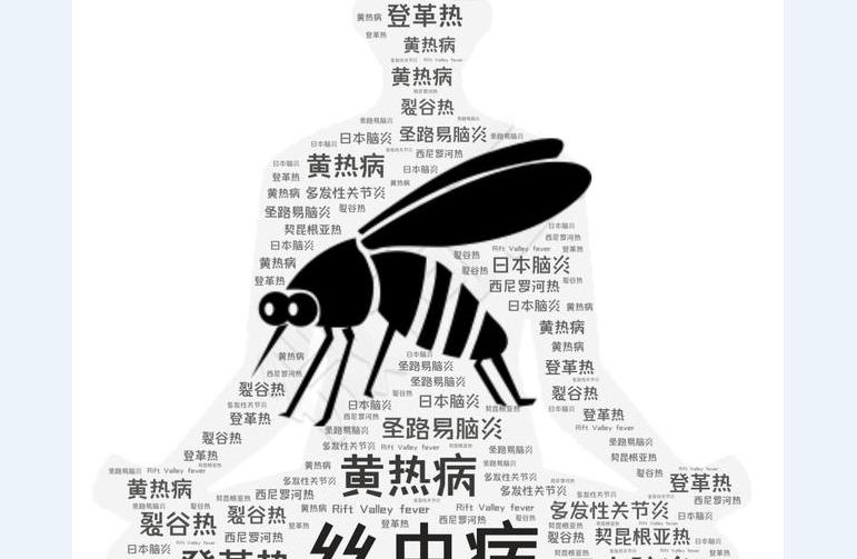 不要为蚊子献血 蚊子是人类的顶级掠食者